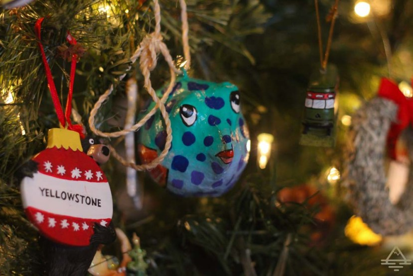 The 12 Ornaments of Christmas