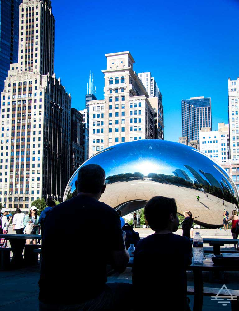 A Picnic by the Bean in Chicago